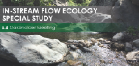 In-stream flow ecology special study